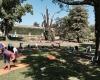 Séance en extérieur au jardin public, ysananda yoga à bordeaux